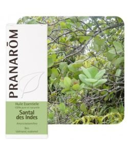 Santal des Indes (Amyris balsamifera), 10ml