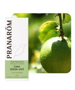 Lime - citron vert (Citrus aurantifolia)