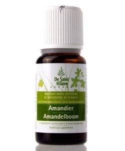 Amandier (Prunus dulcis) bourgeon BIO, 30ml