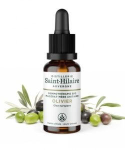 Olivier (Olea europaea) bourgeon BIO, 30 ml