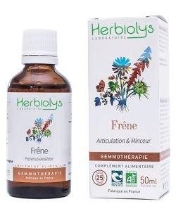 Frêne élevé (Fraxinus excelsior) - bourgeons frais BIO, 50ml