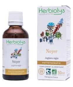 Noyer (Juglans regia) - Macérat de plantes fraîches BIO, 50ml
