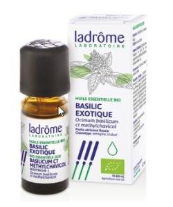 Basilic exotique (Ocimum basilicum var. basilicum) BIO, 10ml