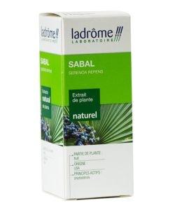 Sabal - extrait de plante fraîche
