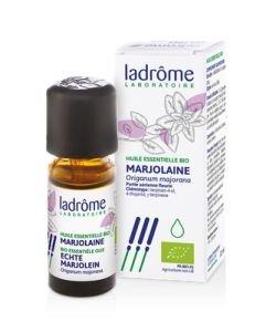 Marjolaine huile essentielle (Origanum majorana)