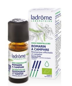 Romarin à camphre (Rosmarinus officinalis ct camphre)