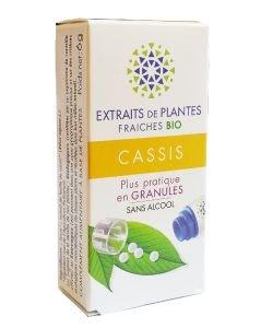 Cassis - Extrait de plante fraîche BIO, 130granules