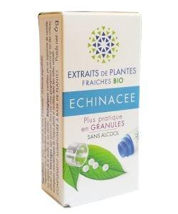 Echinacée - Extrait de plante fraîche BIO, 130granules