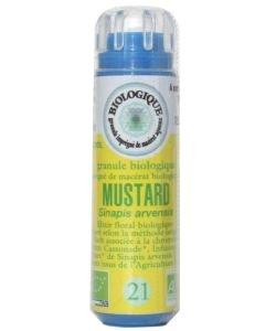 Moutarde - Mustard (n°21) SANS ALCOOL BIO, 130granules