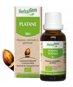 Platane (Platanus orientalis) bourgeon BIO, 15ml
