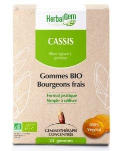 Bourgeon de Cassis en pastilles BIO, 24gommes