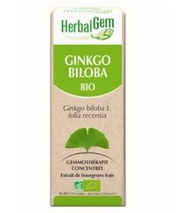 Ginkgo (Ginkgo biloba) bourgeon BIO, 50ml