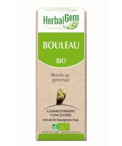 Bouleau (Betula) bourgeon BIO, 15ml