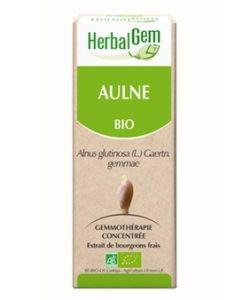 Aulne (Alnus glutinosa) bourgeon BIO, 15ml
