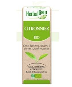 Citronnier (Citrus limonum) écorce BIO, 50ml