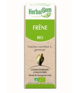 Frêne (Fraxinus excelsior) bourgeon BIO, 50ml
