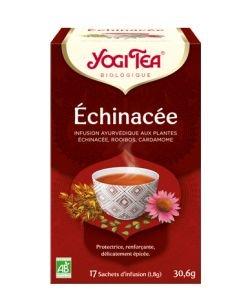 Echinacea - Ayurvedic Infusion