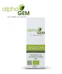 Séquoia (Sequoiadendron gigenteum) bourgeon BIO, 50ml