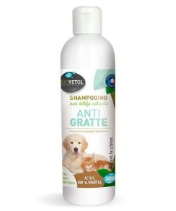 Shampooing Anti Gratte