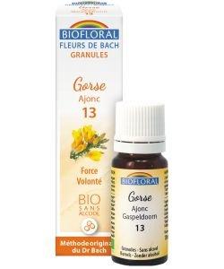 Ajonc - Gorse (n°13), granules sans alcool BIO, 10ml