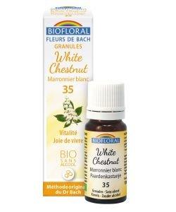 Marronnier Blanc - White Chestnut (n°35), granules sans alcool