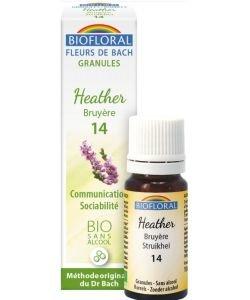 Bruyère - Heather (n°14), granules sans alcool BIO, 10ml