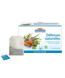 Infusions Défenses naturelles