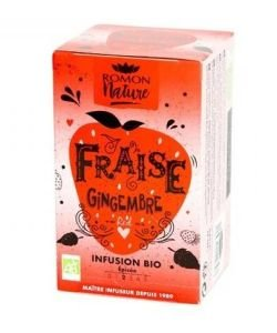 Fraise Gingembre BIO, 16infusettes