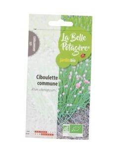 Ciboulette commune BIO, 0,5g