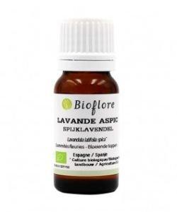 Lavande aspic (Lavandula latifolia spica) BIO, 30ml