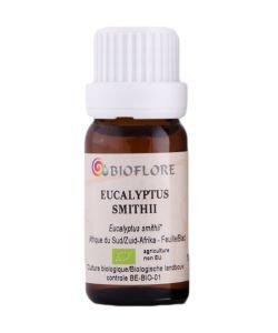 Eucalyptus de Smith