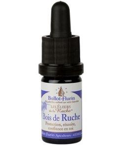 Bois de Ruche, Protection et réussite.
