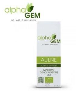 Aulne (Alnus glutinosa) bourgeon unitaire BIO, 50ml