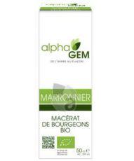Marronnier (Aesculus hippocastanum) bourgeon