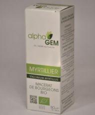 Myrtillier (Vaccinium myrtillus) bourgeon