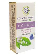 Alchemille - Extrait de plante fraîche
