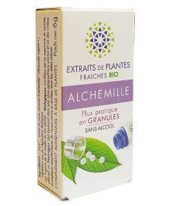 Alchemille - Extrait de plante fraîche BIO, 130granules