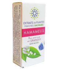 Hamamelis - Extrait de plante fraîche