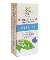 Myrtille - Extrait de plante fraîche