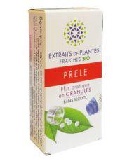 Prêle - Extrait de plante fraîche