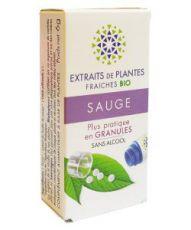 Sauge - Extrait de plante fraîche