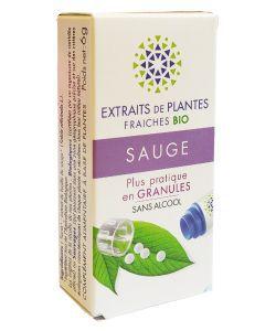 Sauge - Extrait de plante fraîche BIO, 130granules