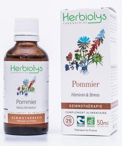 Pommier (malus communis) - bourgeons frais BIO, 50ml