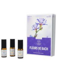Fleurs de Bach - Coffret livre + 3 sprays
