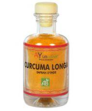 Curcuma longa