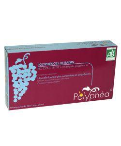 Polyphéa - Polyphénols de raisin BIO, 10ampoules
