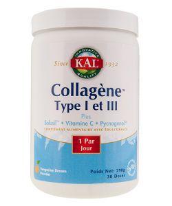 Collagène type I et III, 298g