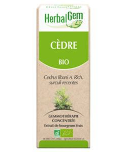 Cèdre (Cedrus libani) bourgeon BIO, 15 ml