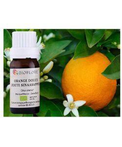 Orange douce (Citrus sinensis),