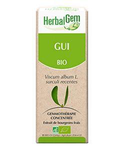 Gui (Viscum album) j.p. BIO, 50ml